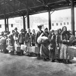 Arrivals (1892)